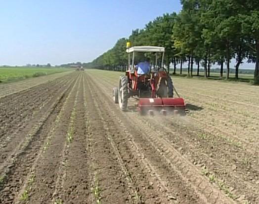 Credito agli agricoltori, iniziativa della Regione Toscana
