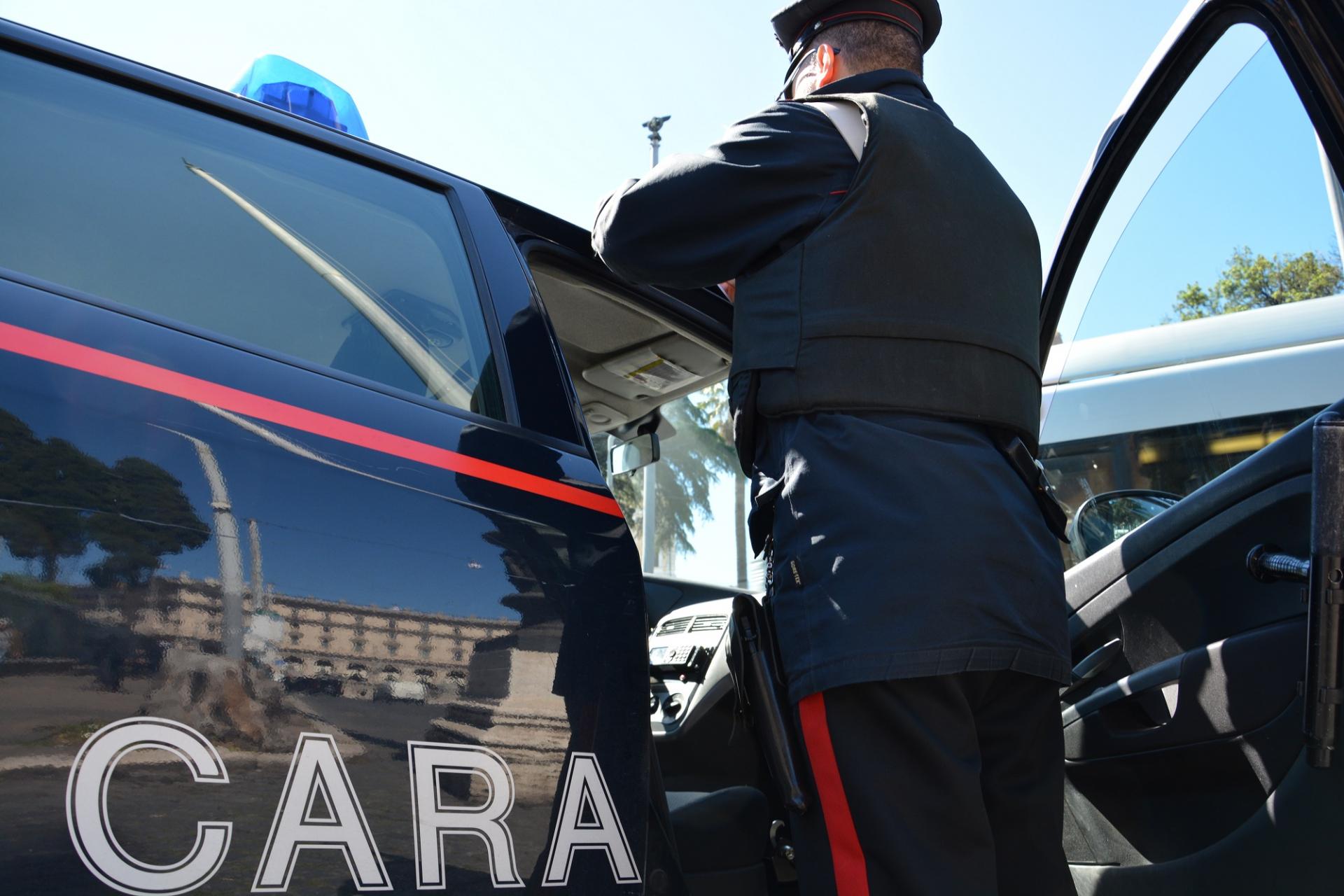Sassi contro un cane e percosse a Carabinieri